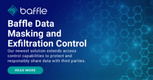 baffle data masking and exfiltration control